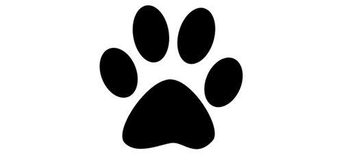 Bästa kattpappan i världen :)